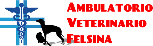 Ambulatorio Veterinario Felsina